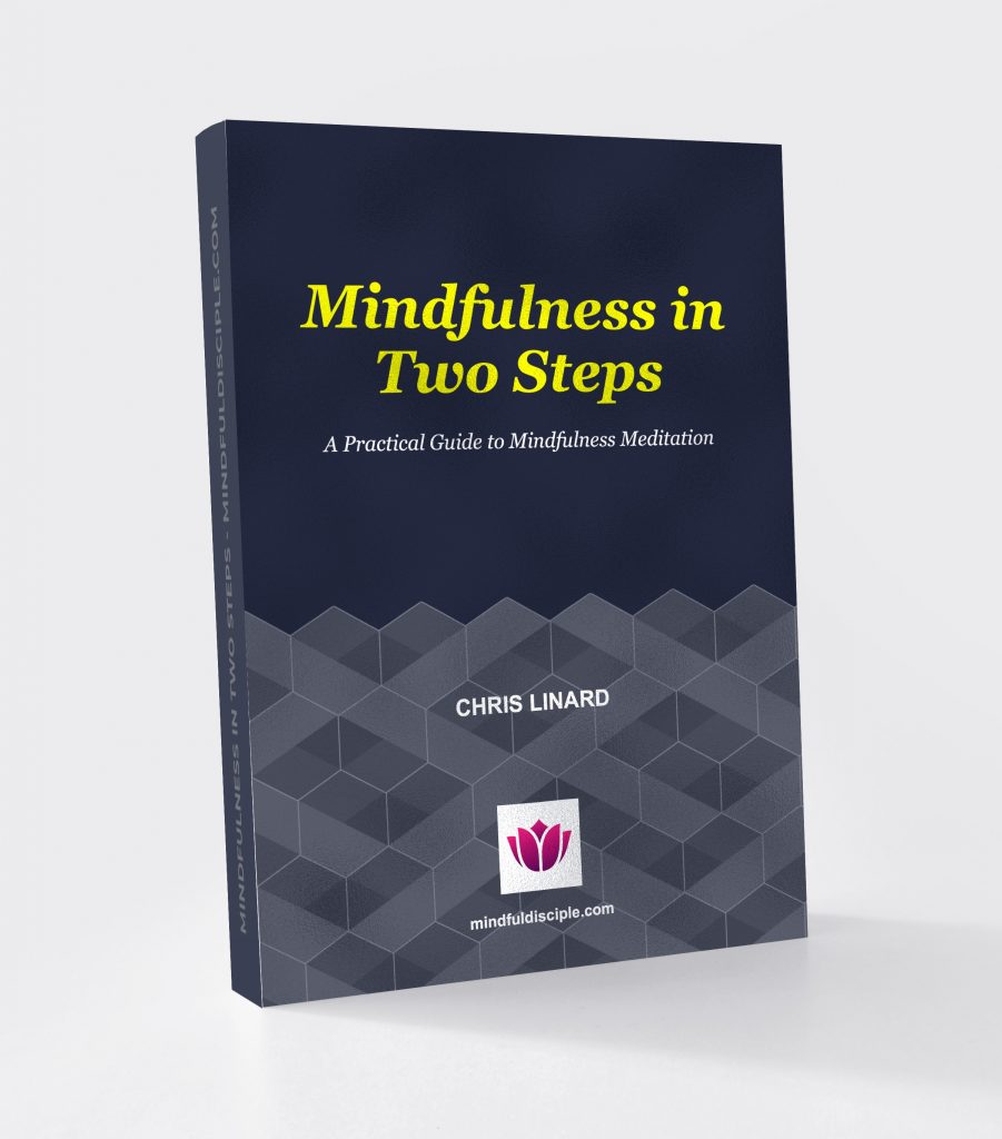 Mindfulness in Two Steps Ebook Cover